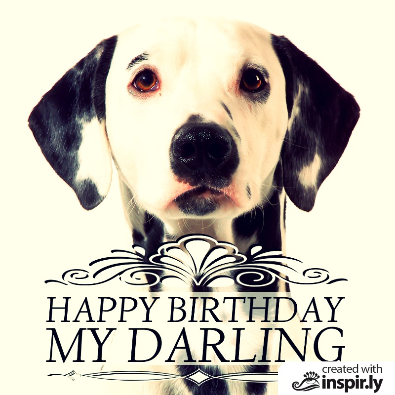 Free online animal birthday card designer happy birthay my darling 235253 bookmarktalkfo