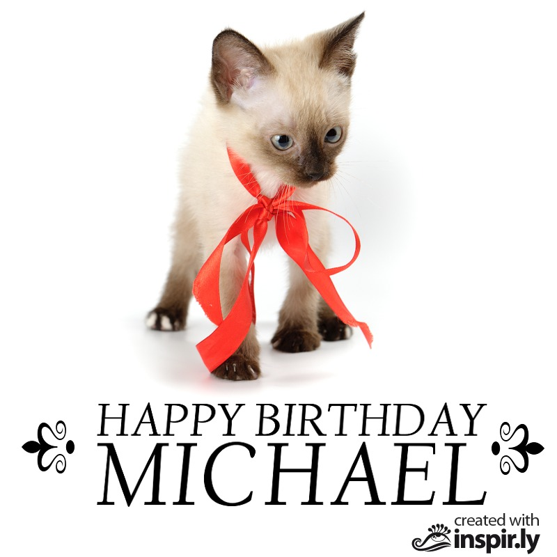 Happy Birthday cat puppy-235242