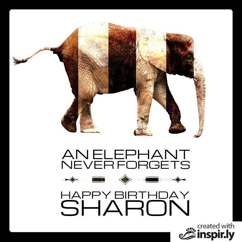 an elephant never forgets happy birthday-235245